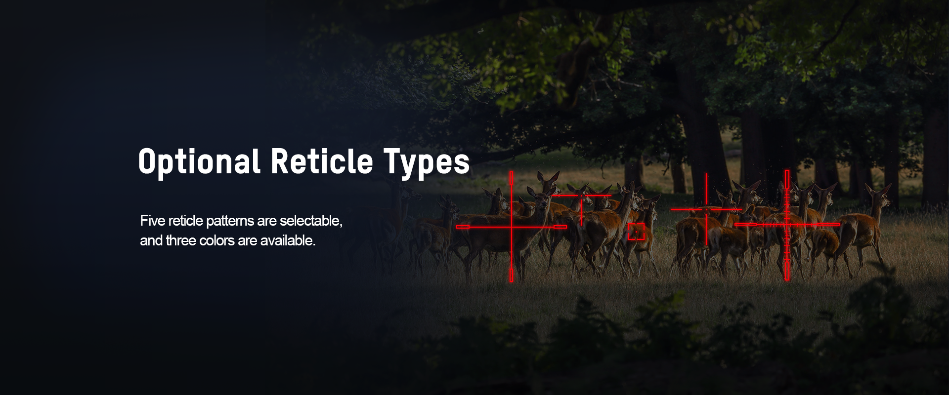 03-Optional Reticle Types-Scope-thunder  .png